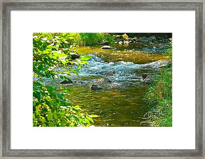Brook Is That Your Babbling Framed Print by Randy Rosenberger