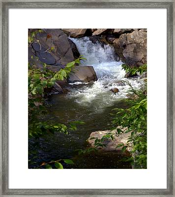 Brook Of Tranquility Framed Print