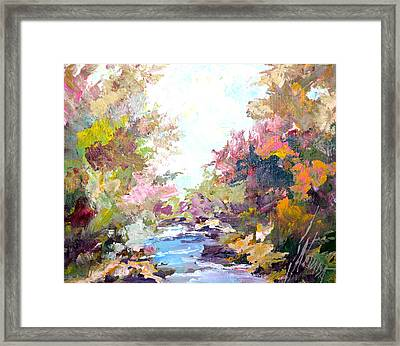 Brook Framed Print by Steven Nevada
