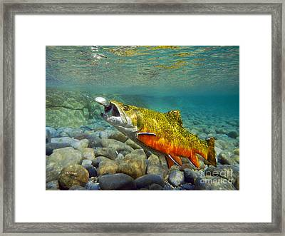 Brook Trout And Mepp's  Framed Print by Paul Buggia
