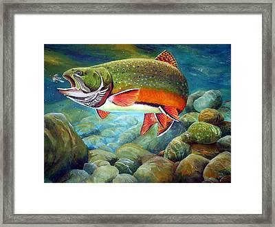 Brook Trout Breakfast Framed Print by Alvin Hepler