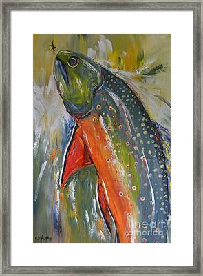 Brook Trout Framed Print by Cher Devereaux