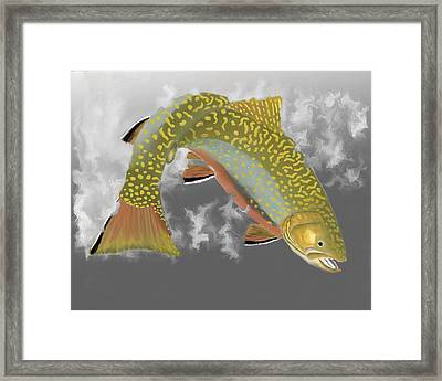 Brookie Framed Print