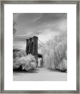 Framed Print featuring the photograph Brooklyn Bridge Willows by Dave Beckerman
