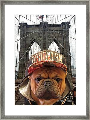 Brooklyn Dog Framed Print