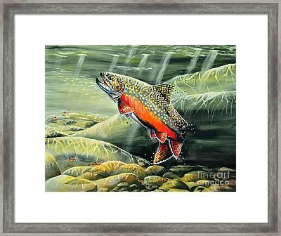 Brooky Hookup Framed Print