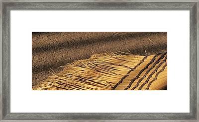 Broom - 1 Framed Print by Bridget Johnson
