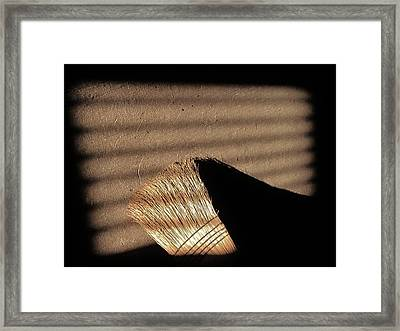 Broom - 2 Framed Print by Bridget Johnson