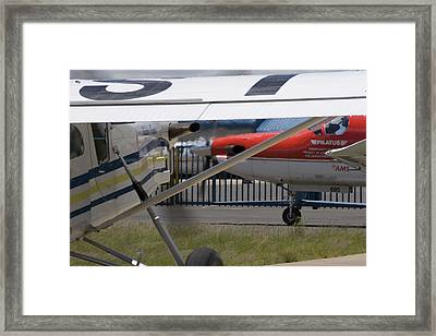 Brother And Sister Framed Print by Paul Job