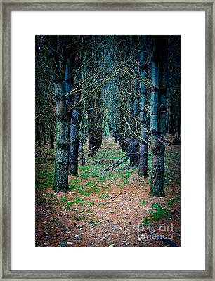 Brothers Grimm Forest Framed Print