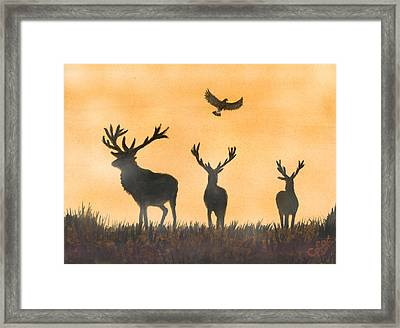 Brothers In Arms And The Fly Past Salute Framed Print