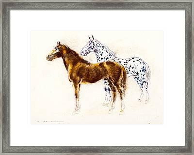 Brown And Appaloosa Horse Framed Print by Kurt Tessmann