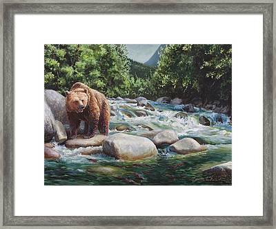 Brown Bear On The Little Susitna River Framed Print by Karen Whitworth