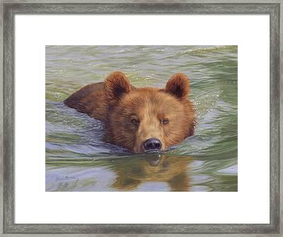 Brown Bear Painting Framed Print by David Stribbling