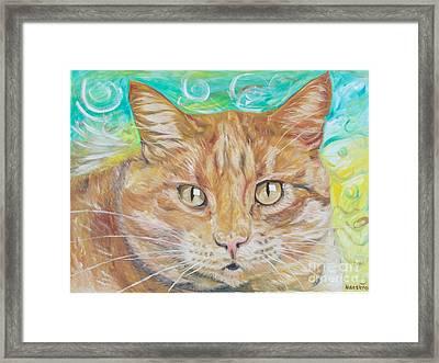 Brown Cat Framed Print by PainterArtist FINs husband Maestro
