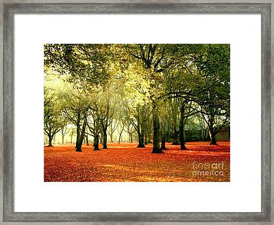 Framed Print featuring the photograph Brown Colors by Boon Mee