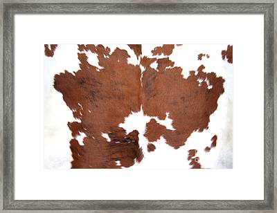 Framed Print featuring the photograph Brown Cowhide by Gunter Nezhoda