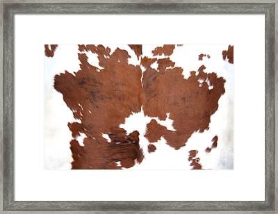 Brown Cowhide Framed Print by Gunter Nezhoda