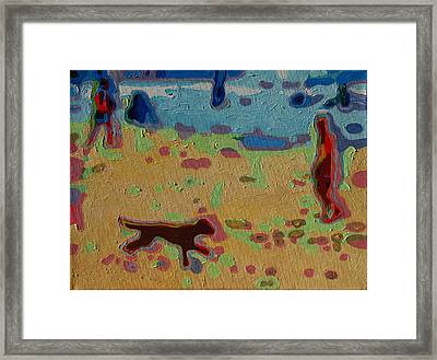Brown Dog On Beach Framed Print