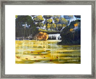 Brown Ducks Near The Waterfall Framed Print by Pamela  Meredith