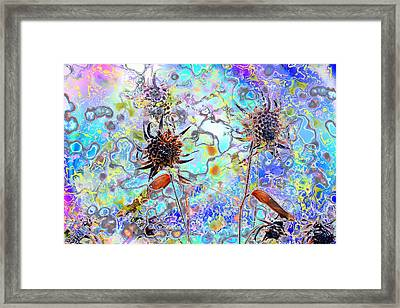 Brown Flower Abstract Framed Print