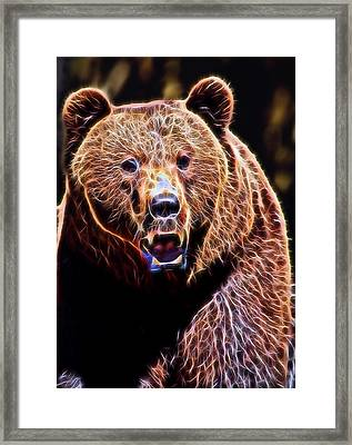 Brown Grizzly Framed Print by Daniel Hagerman