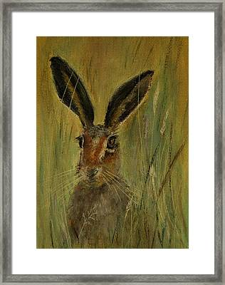 Framed Print featuring the painting Brown Hare Miniature by Lynn Hughes