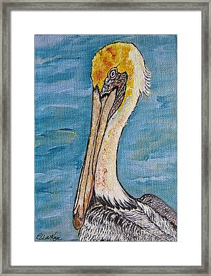 Brown Pelican Framed Print by Ella Kaye Dickey