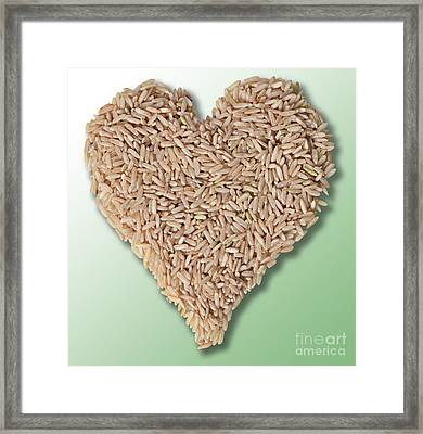 Brown Rice, Heart Healthy Framed Print by Gwen Shockey