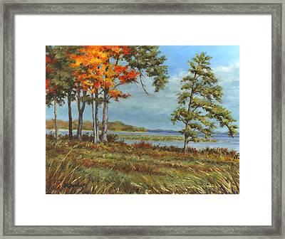 Browns Bay Framed Print by Richard De Wolfe