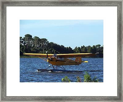 Brown's Piper Cub 005  Framed Print by Chris Mercer