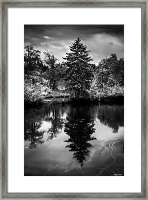 Brownsmead Reflection Framed Print
