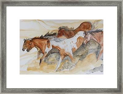 Bruneau Idaho Framed Print by Janina  Suuronen