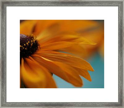 Brush Strokes Framed Print by Connie Handscomb