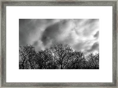 Brush Strokes Framed Print by Steven Milner