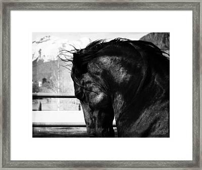 Brute Power Framed Print by Royal Grove Fine Art