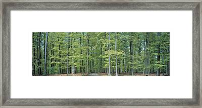 Bruxelles Belgium Framed Print by Panoramic Images