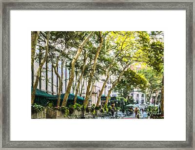Bryant Park Midtown New York Usa Framed Print
