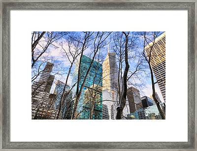 Bryant Park Tree Tops Framed Print by Diana Angstadt