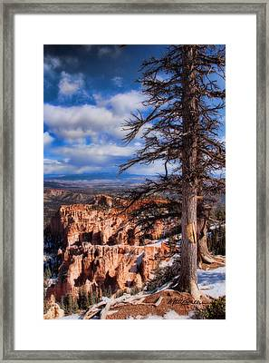 Bryce Canyon 1 Framed Print