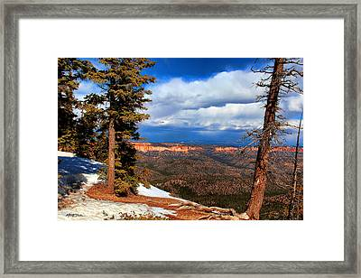 Bryce Canyon Cliff Shot 3 Framed Print by Marti Green