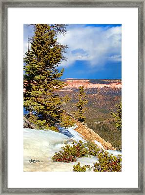 Bryce Canyon Cliff Shot 4 Framed Print by Marti Green