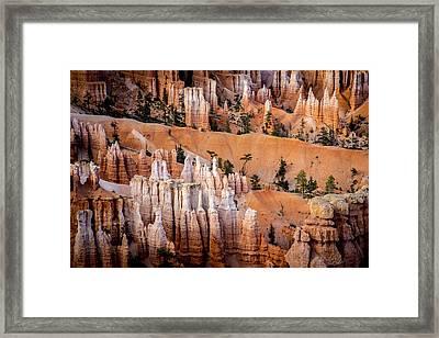 Bryce Canyon Hoodoos Framed Print