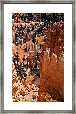 Bryce Canyon National Park 2 Framed Print by Thomas Woolworth