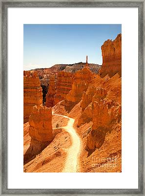 Bryce Canyon Trail Framed Print