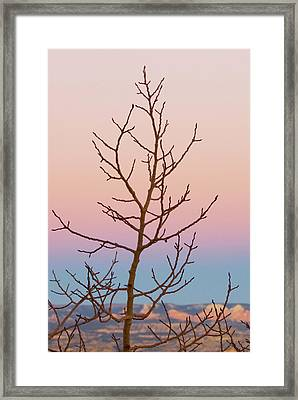 Bryce Canyon, Utah Framed Print by Jan and Stoney Edwards