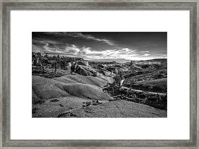 Bryce Canyon V Framed Print by Jeff Burton