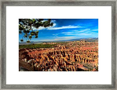 Bryce Framed Print by Robert Bales