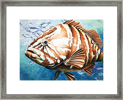 Bubba Framed Print by William Love