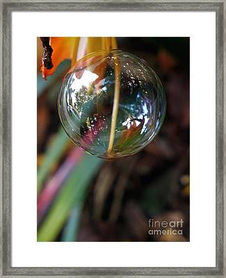 Bubble Cocoon         Framed Print by Kaye Menner